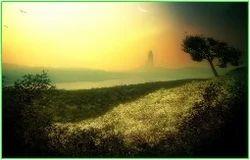 Procure Land
