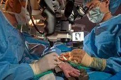 Microvascular Surgeon