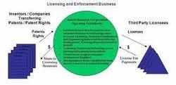 Business Model II Licensing