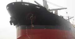 Marine Cargo
