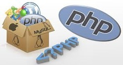 PHP Scripting Service