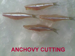 Anchovy Cutting  Fish Fillet