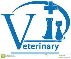 Pharma PCD Veterinary In Himanchal