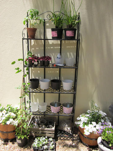 Garden Plant Stand Wholesaler From Indore