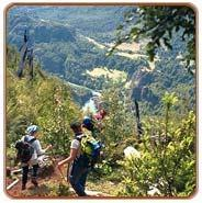 Mountain Trekking and Expeditions