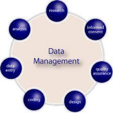 Data Management and Processing