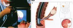 Ultrasound Services