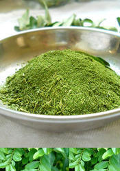 Pure Curry Leaves Powder