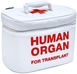 Liver Transplant Treatment Surgery