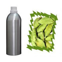 Cardamom Elettaria Cardamomum Oil