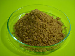 Hydrolyzed Vegetable Protein Products