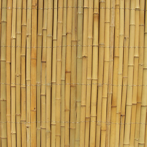 Bamboo Fencing - Bamboo Rail Fence Latest Price