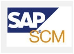SAP SCM Service   Powai, Mumbai   Knack Systems   ID: 4539569891