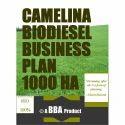 Camelina Biodiesel Business Plan 1000 Ha