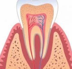 Periodontics Dental Treatment