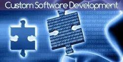 Custom Software Developing