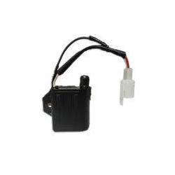 Automotive Electronic Grill Ignitor