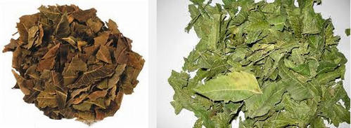 Dry Neem Leaves, Pack Size: 50 Kg, Rs 235 /kilogram, The Middle Man