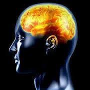 Neurology Treatment Service Electroencephalography (EEG)