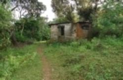 Acre Agriculture Land For Sale
