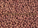 Sandalwood Beads Unpolished 10 Mm