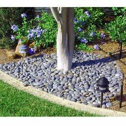 Pebbles And Stones For Gardens Pebble stone in delhi manufacturers suppliers of pebble stone garden pebbles workwithnaturefo