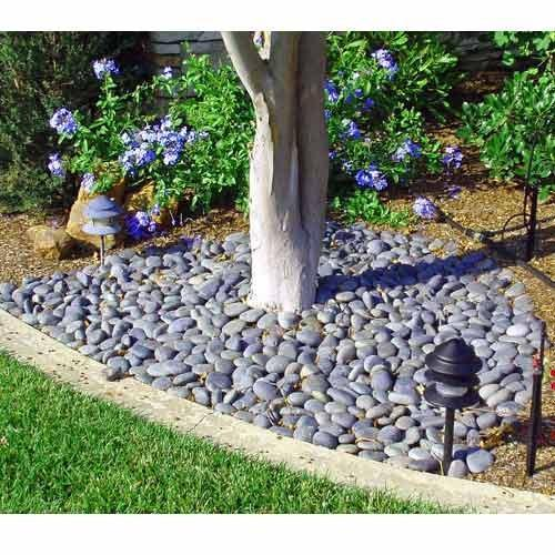 Backyard Pebbles: View Specifications & Details Of Garden