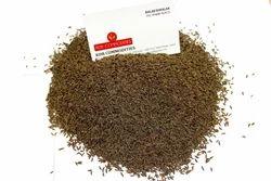 Caraway Seeds - Shajeera