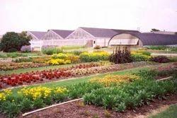 Horticulture services in jaipur expert horticulture services arbor care solutioingenieria Images