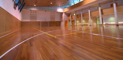 Basketball Court Wood Flooring Wooden Flooring Prakash Nagar