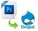 Psd To Drupal Conversion Services