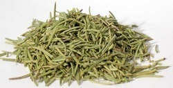 Rosemary (Rosamarinus Officinalis), 50 Kg, Packaging Type: Pp Bag