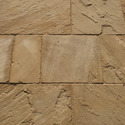 Fossil Mint Stone