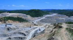 Mineral Exploration Service