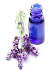 """Résultat de recherche d'images pour """"lavender oil"""""""