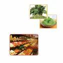 Vegetable Powders For Food Industries