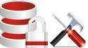 Website Maintenance (amc)