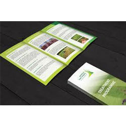 Brochure Printing Services, in Pan India