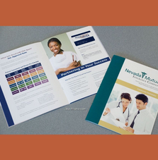 4 Page Stitched Insert Booklet Printing Services