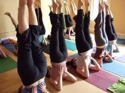 Yoga Training Classes