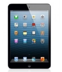 Apple iPad Mini 32GB Wi-Fi (Black and Slate)