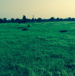10 Acre Land For Sale