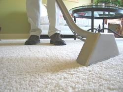 Carpet Shampooing and Upholstery Cleaning Services