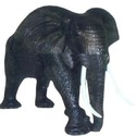African Elephant Leather Product (Aflp-01)