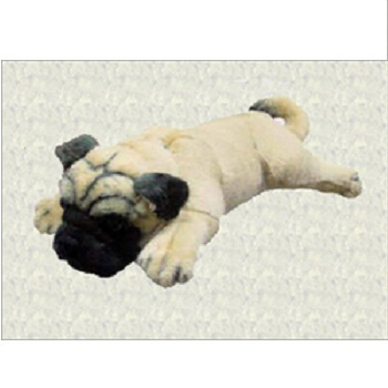 Pug Soft Toy Mtc Toys Private Limited Trader Importer Supplier