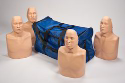 Pack Of 4 CPR Simulator Anatomy Model