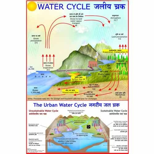 Environment charts biosphere chart manufacturer from new delhi ccuart Image collections