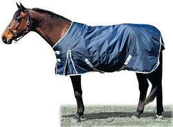 1680dn Horse Winter Turnout Rug