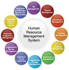 Service Provider Of Human Resource Management Amp Corporate