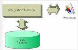 Integration Services